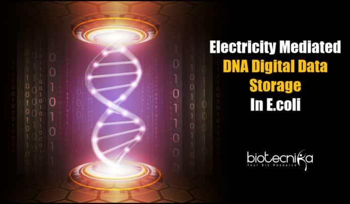 DNA Digital Data Storage