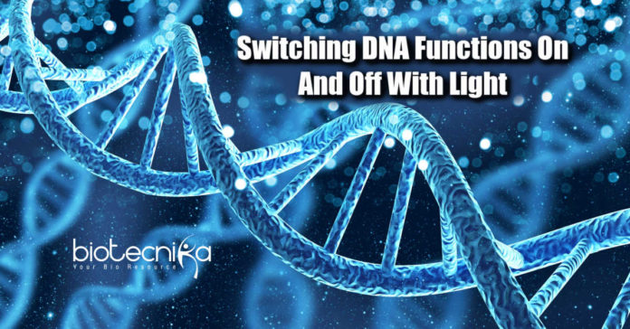 Switch DNA functions