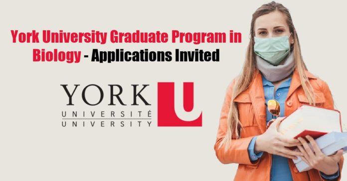 York University Graduate Program